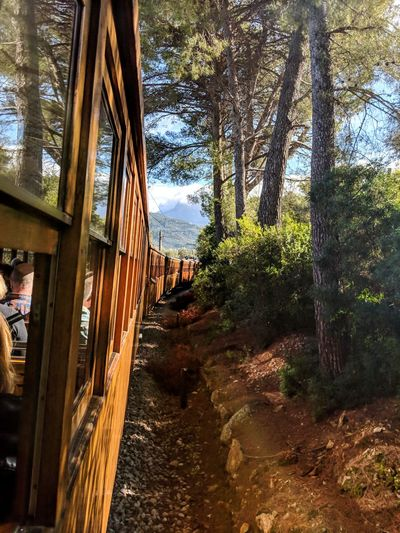 travel Travel Photography Shotonpixel2xl Historic Train 1912 Tree Window Water Sky Architecture Built Structure