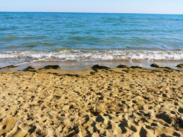 Water Sea Beach Sand Wave Sky Horizon Over Water The Architect - 2018 EyeEm Awards