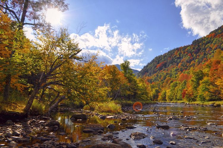 Nature Beauty In Nature Outdoors Nature On Your Doorstep My View Right Now Adirondack Mountains Nature At Work Share Your Adventure 43 Golden Moments My Best Photo 2016 Beauty In Nature Upstate New York Autumn Collection Autumn 2016 Autumn Autumn Colours What Who Where