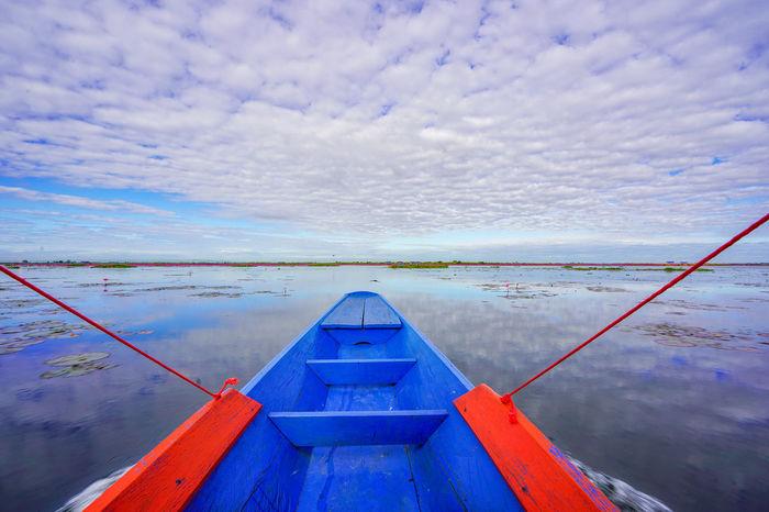 ทะเลบัวแดง Water Outdoors Day Nature Red Indian Water Lily Red Lotus Red Lotus In Thailand Red Lotus Lake