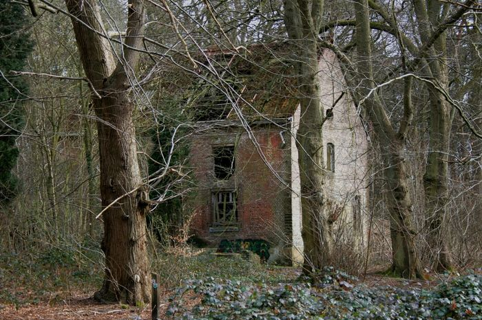Abandoned Places Abandoned Buildings Abandoned & Derelict Abandoned House Abandonedbuilding Abandonedplaces Houseinthewoods Houseintheforest Derilict Old House Old Buildings Broken Down Broken Wall Outdoors Outside Out And About Out Walking Outside Photography Brick Building Brickhouse Brick House Overgrowth And Unmaintained Lanaken