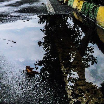 باران که می بارد ، دلت را محکم بچسب زیر باران ، دل به اشاره ای می رود