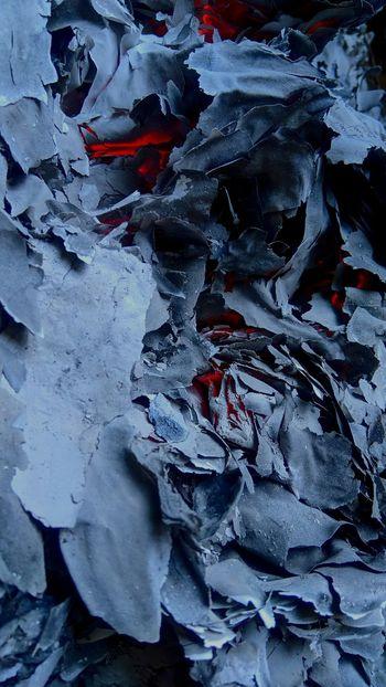Crumpled Paper Wastepaper Basket Crushed Crumpled Wrinkled