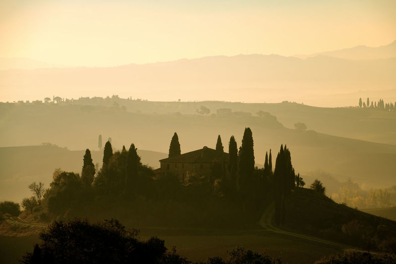 Tuscany Italy Siena Florence Cypresses Trees Sunrise Sunset Hanging Out Hills Valley Farm Fog Orange Outdoor No People Landscape Nature San Quirico D'Orcia Val D'orcia Podere Belvedere Pienza Field Green Rural