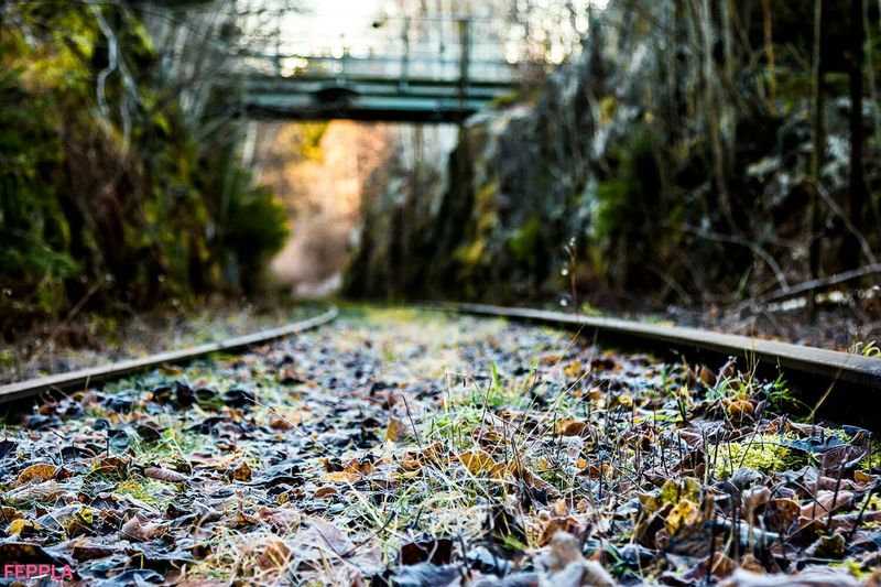Railway Tunnel Hello World Taking Photos Hudiksvall Folowme Folowforfollow Aoutmn Nofilter Nature Fotography