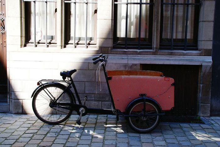 Bycicle Bicicleta Veiculos Veichle City Antwerp, Belgium Bruselas Foto Artistica