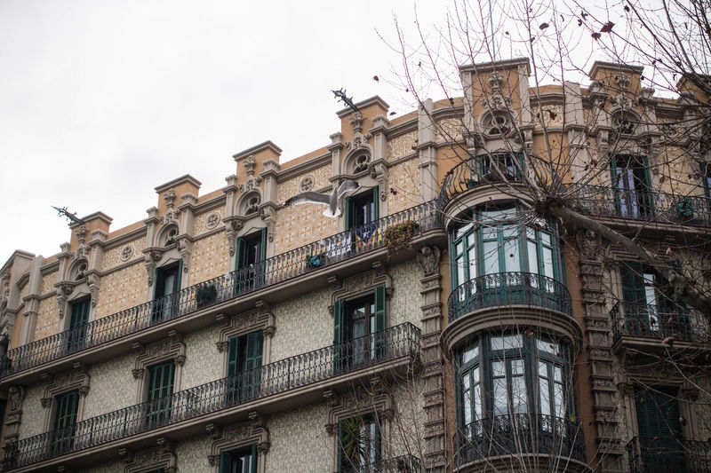 Beautiful Window Catalonia Catalunya Old Window SPAIN Architecture Balconies Balconies In The Building Balcony Bare Tree Bare Trees Bay Window Bow Window Building Exterior Built Structure Day No People Old Window Frame Old Windows Outdoors Sky Window Windows Winter Barcelona
