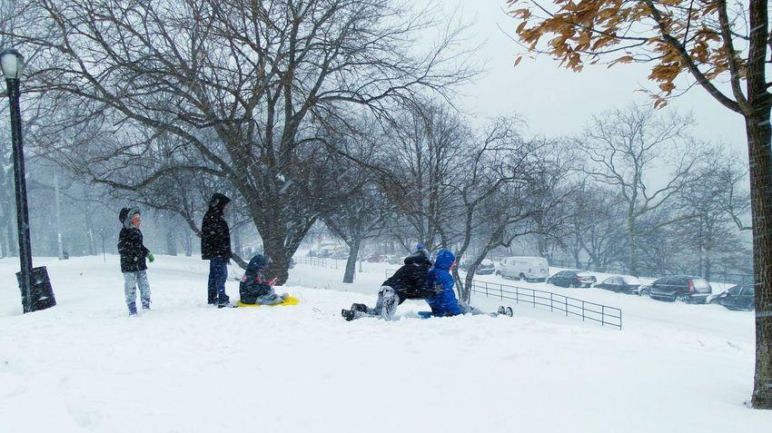 Snow Sledding: paikura© NYC EyeEm Best Shots AMPt_community Eye4photography  NYC Photography Blizzard 2016 Winter Storm Jonas The Photojournalist - 2016 EyeEm Awards People Together