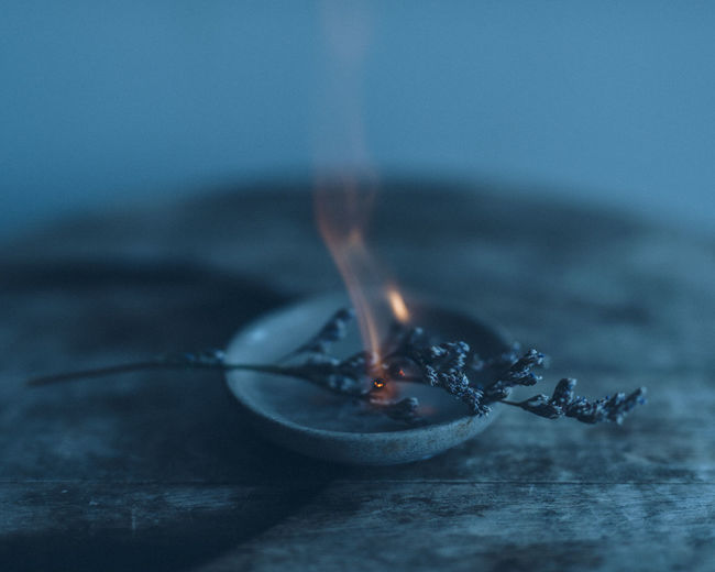 Close-up of burning plant in bowl
