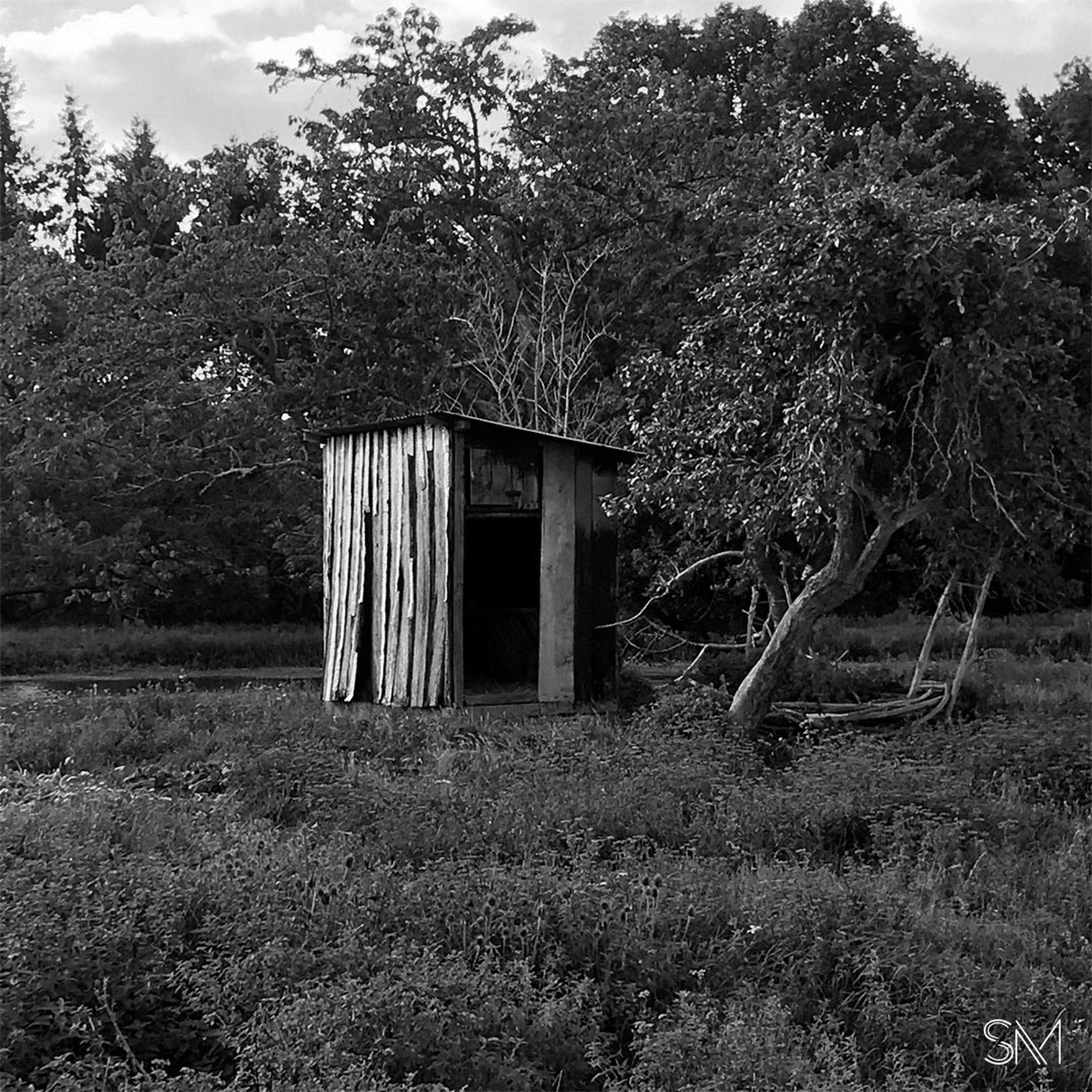 plant, rural area, tree, built structure, architecture, black and white, nature, house, monochrome, monochrome photography, no people, shack, land, building exterior, growth, sky, building, day, landscape, field, abandoned, forest, white, black, grass, outdoors, hut, darkness, cloud, wood, rural scene, old, environment, tranquility, woodland