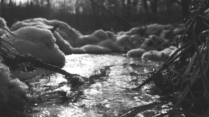 frozen mini pond Ice No People Blackandwhite B&w Cold Days Pullover Weather Snow Snow Day White Frozen Water Nature Sea Outdoors Day One Person Beauty In Nature
