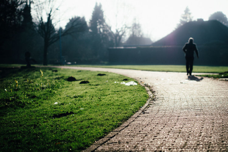 Narrow Walkway In The Park