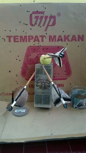 Take out your anger with shoot arrows 🎯🎯🎯 Sport In The City Archery Archerboy Indonesianarchery Evening Focus Bang On Target