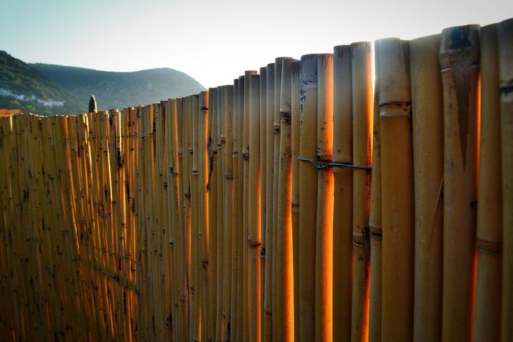 Sunsetphotographs Sun Light Fence Sea