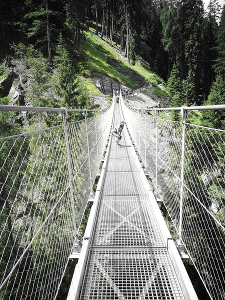 Valdirabbi Tibetan Bridge Paura Extremely