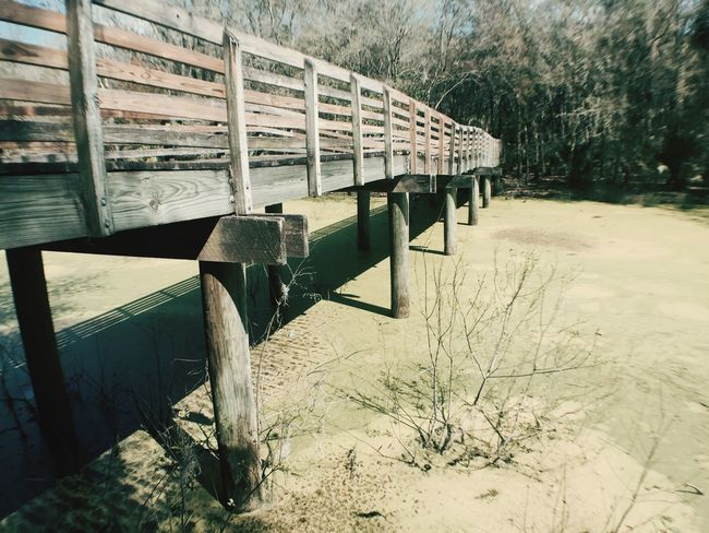Wood Bridge Check This Out Tampa Lines Hello World Taking Photos Enjoying Life Relaxing