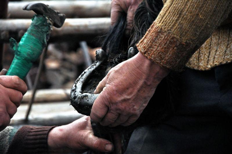 People working on horseshoe