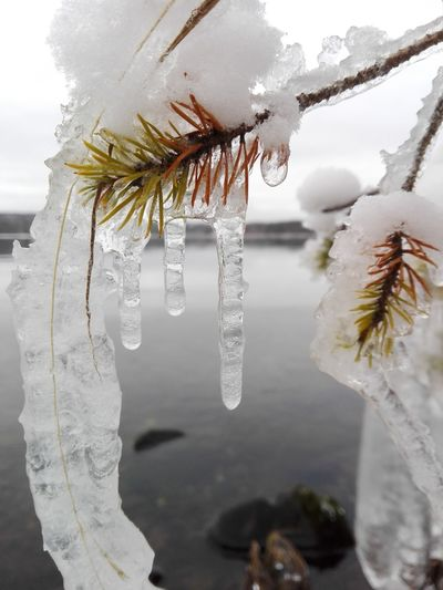 Ice hand Water Nature Beauty In Nature Cold Temperature Winter Outdoors Naturebeauty Nature Photography Photographer Photography Finnish Nature Weather Naturelovers Ice