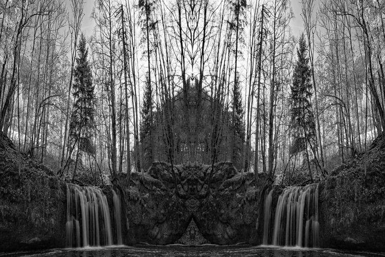Autumn Creek Leaves🌿 Trees Double Fliessend Im Fluss Landscape Slow Water Waterfall