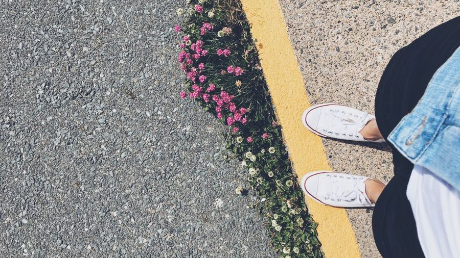 Look Down Road Flowers Roadside Sunny Sunny Day Throwback Halifax Shoe White Shoes White Standing Holiday Summer Peggyscove Canada Explorecanada Nature Beauty In Nature Sunlight ☀ Good Times Denim Ootd Clean Naturelovers