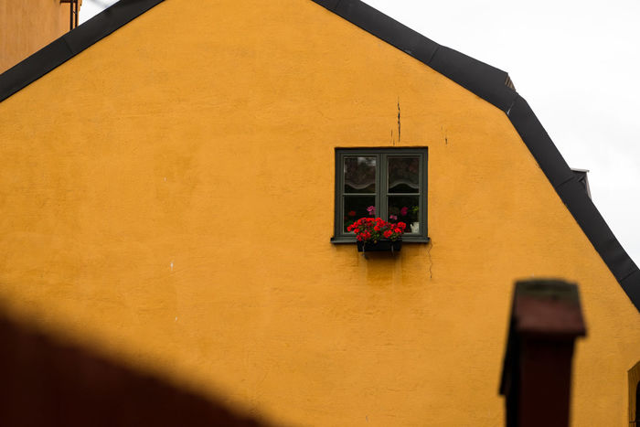 Lonely Stockholm Stockholm Streetphotography Architecture Built Structure Day Flowers Low Angle View No People Old Old Buildings One Outdoors Singular Streetphotography Window Yellow