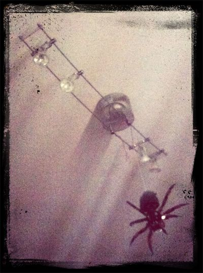 The spider hanging from my lamp. Spider LEGO Lego Not Legos You Wouldnt Say Chineses