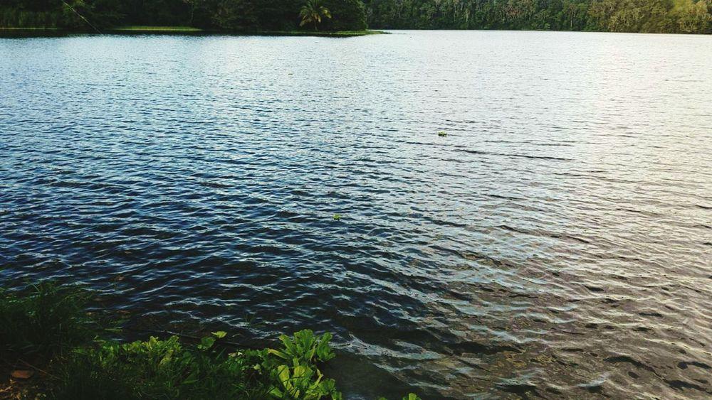 Lake View Beautiful Day Hello World Samsung Galaxy S7 Eyeem Puerto Rico Fishing Time Puerto Rico Perfect View