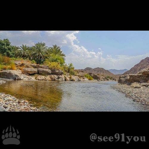 Made with Pixlr تصويري  عمان الحوقين قد تكون الطبيعة التي امامك غير مرئيه ولكن افتح بصيرتك وتمعن تجدها تمامك