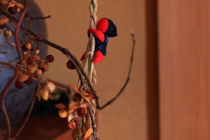 さるぼぼ 秋の風景 飛騨高山 お土産で自宅Photo♡