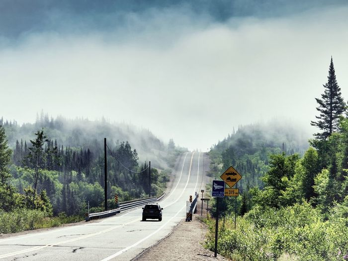 Tree Plant Transportation Fog Nature Beauty In Nature Mode Of Transportation Road Land Vehicle Scenics - Nature Sky Day Travel Cloud - Sky Motor Vehicle Non-urban Scene Growth Mountain Land Outdoors
