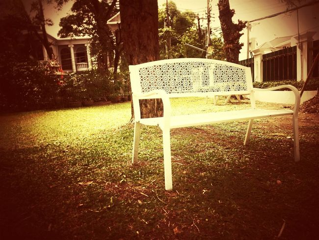 Sitting In The Park Waiting For You Alone Relaxing Empty Chair City Life Bangkok City Lonely