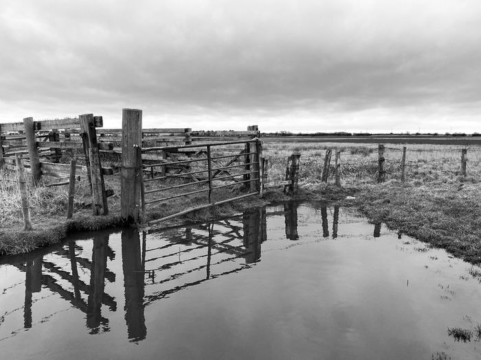 Wooden posts on water against sky