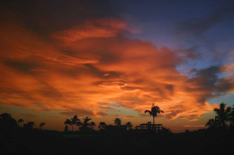 EyeEm Best Shots - Sunsets + Sunrise Sunrise Sunrise_sunsets_aroundworld Sunset Beautiful Amazing View Stunning EyeEm Best Edits Eye4photography  EyeEm Best Shots