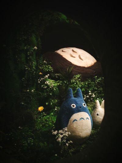 Ghibli 2015 Ghibli Studio Exhibition Tonari No Totoro