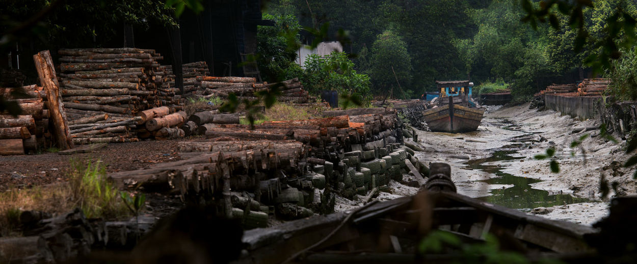 The Oldest Charcoal factory in Perak, Kuala Sepetang Damaged Day Deforestation Forest Land Large Group Of Objects Log Nature No People Outdoors Plant Selective Focus Stack Timber Transportation Tree Water Wood Wood - Material My Best Photo