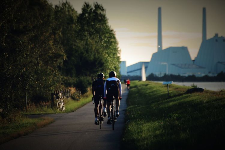Rear view of cyclists riding bicycles on road during sunset