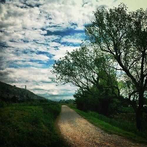 #nature #jogging #sky #clouds #beautyofnature #trees