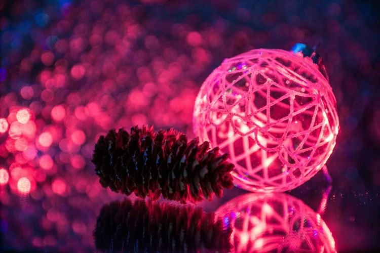 Close-up No People Indoors  Biology Animal Themes Sea Life Aquarium Color New Year 2017 Christmas Christmas Market Vibrant Color Illuminated Cristmas Time♥ 2017 Year Christmas Decoration Decoration Holiday - Event Night Tradition Christmas Ornament Flame Heat - Temperature Focus On Foreground Multi Colored