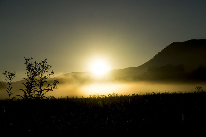 Beauty In Nature Cades Cove Countryside Fog Foggy Foggy Morning Idyllic Majestic Morning Mountain Mountain Range Mountain View Mountains Nature Non-urban Scene Outdoors Remote Scenics Silhouette Sunlight Sunrise Sunrise_Collection Tranquil Scene Tranquility