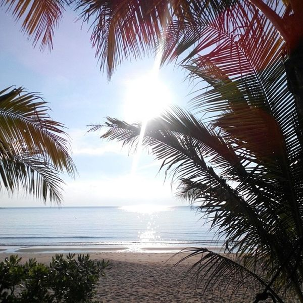 What Does Peace Look Like To You? Life Is A Beach Light Up Your Life Look Up And Thrive Malaysia Truly Asia Tioman RePicture Travel Totally Worth It Check This Out Today's Hot Look