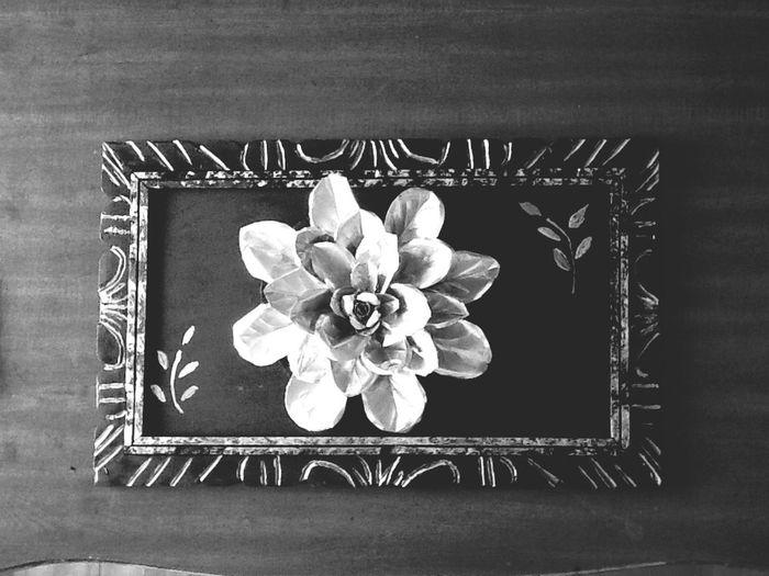 Flower Blackandwhite Black & White Sliver