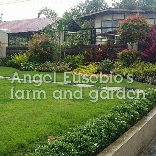 EyeEm Best Shots - Landscape Good Service Quality Originality Satisfaction Landscaping_services