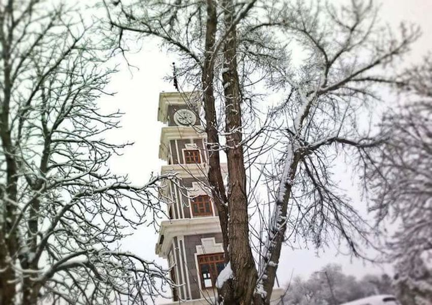 Erzincan Saat Kulesi Built Structure Architecture Bare Tree Building Exterior Tree Branch Tower Clock Tower Low Angle View Tall - High Day Sky Outdoors Tall Bell Tower No People Branches