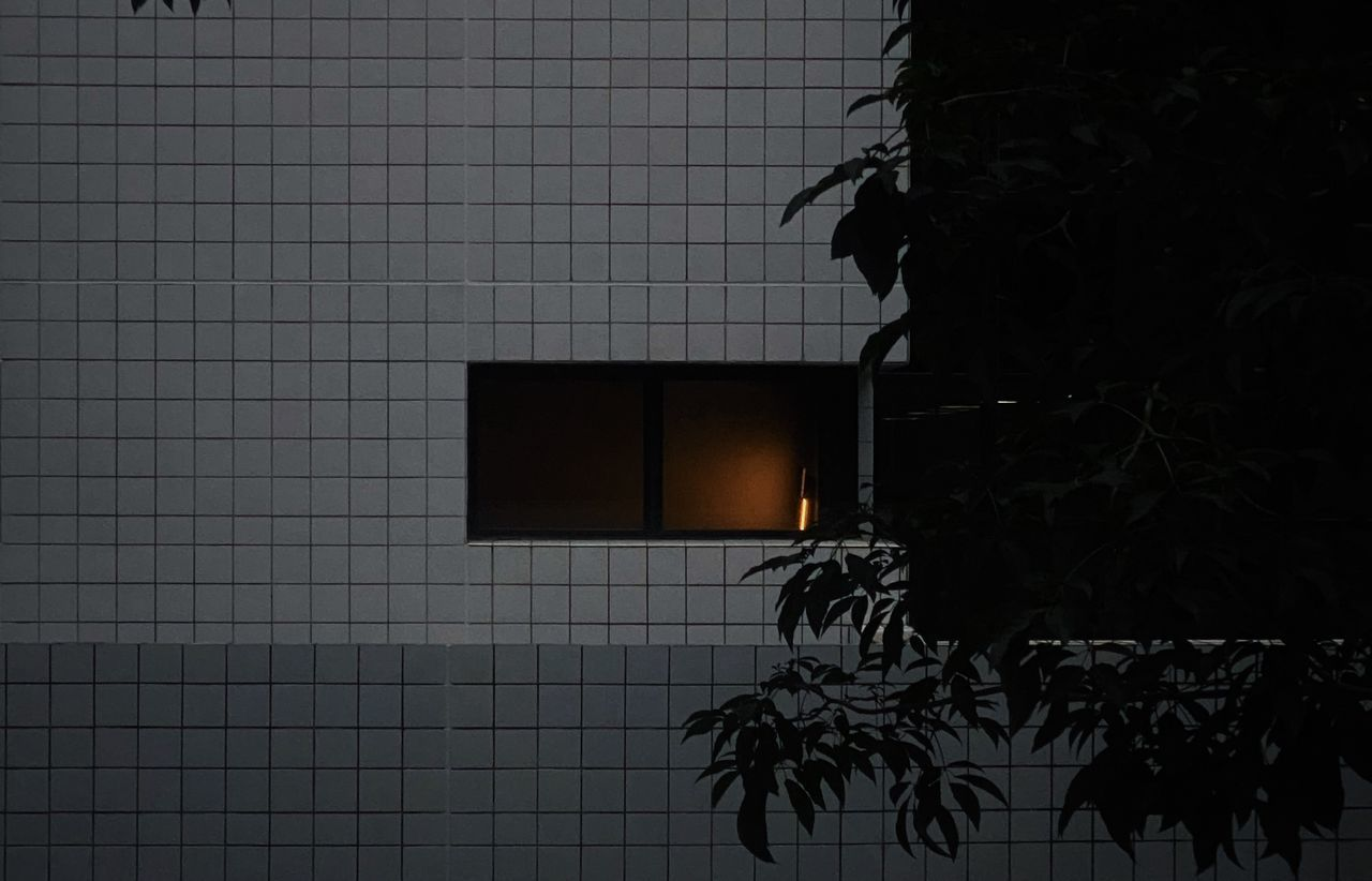 SILHOUETTE TREE BY WALL WITH TILED FLOOR