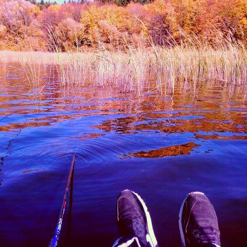 Осінь Relaxing Ukraine