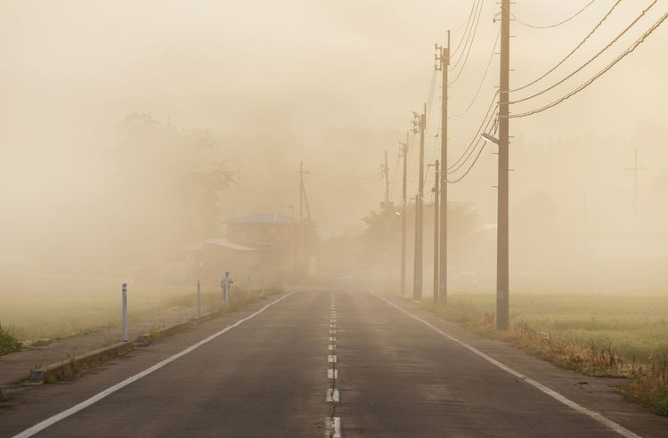 Morning Haze Fog The Way Forward Road Direction Connection Transportation Nature