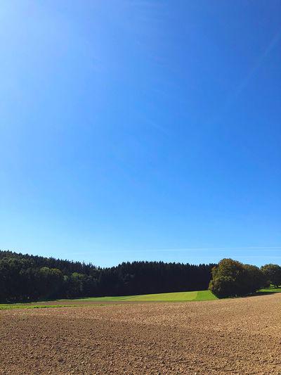Sky Blue Clear