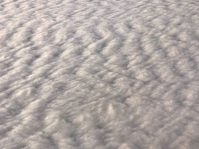 Pattern Textured  Softness No People Backgrounds Full Frame Cloud - Sky Nature Day Close-up Wool Outdoors Sky