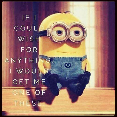 !!!! I Love Minions Minion Fan