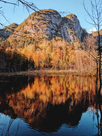 Fall is coming with all its colors !!! Water Reflection Lake Mountain Nature Outdoors Beauty In Nature Scenics Fall Beauty Fall Fall Colors Orange Autumn Leaves Beauty Hike Beaver Hiking Trek Trekking Adventure Waves Hugging A Tree Mythical Forest Lost In The Landscape